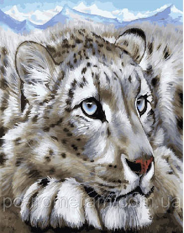 Раскраска для взрослых Снежный барс (BK-GX23620) 40 х 50 ...