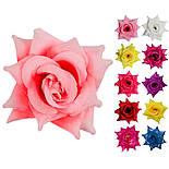Роза нарядная, 13см (РсК), фото 2
