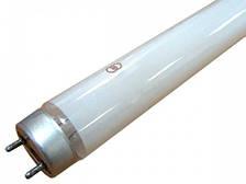 Лампа люмінесцентна еритемна ЛЕ-15 ЛИСМА G13d