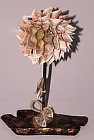 Денежное дерево , фото 1