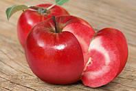Яблоня Эра. (М.9). Красномясый сорт яблони.