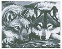 СКВ-194. Схема для вишивки бісером Вовки
