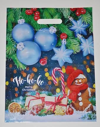 Пакет новогодний ламинированный с врезной ручкой, 40х30 см / Пряник, фото 2