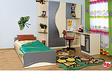 Набор мебели для детской Эколь с кроватью (БМФ) МДФ лак, фото 3