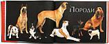 Собаки. Походження та опис понад 160 порід собак з усього світу, фото 2