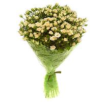 51 белая кустовая роза с доставкой