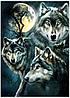 """Набір алмазної вишивки """"Самотній вовк"""""""
