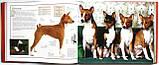 Собаки. Походження та опис понад 160 порід собак з усього світу, фото 5