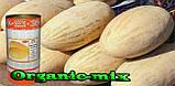 Семена, дыня Торпеда / Радужная (Россия), семена, обработанные, 500 грамм банка, фото 2