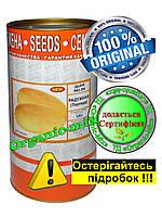 Дыня Торпеда / Радужная (Россия), семена, обработанные, 500 грамм банка (фермерская упаковка)