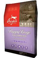 Корм для щенков крупных пород Orijen Puppy Large (Ориджен Паппи Лардж)