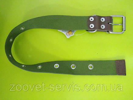 Ошейник для собак брезентовый безразмерный ОБ-3,5, фото 2