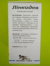 Линкодев флакон 100 мл, фото 2