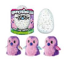 Детская интерактивная игрушка Пингвинчик в яйце Hatchimals, питомец Хэтчималс D761, хетчималс