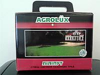 Семена газонной травы ЛИЛИПУТ - 1 кг. элит