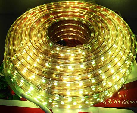 Шланг диодный цветной 20м, фото 2