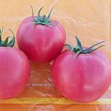 Хепинет F1 10 шт насіння томату низькорослого рожевого Syngenta Голландія, фото 2