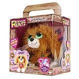 Спаниель потеряшка KD Kids Rescue Runts Spaniel Plush Dog, фото 5