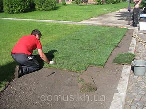 Укладання рулонного газону.