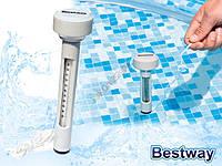 Плавающий термометр, фото 1