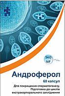 Препарат для мужчин Андроферол Androferol №60