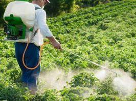 Засоби захисту рослин для дачника