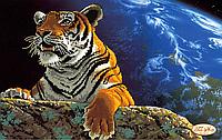 """Схема для вышивки бисером """"Амурский тигр. Спасем планету"""""""