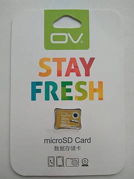 Карта пам'яті OV Stay Fresh 32Gb Class 10