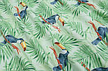 "Ткань хлопковая ""Большие туканы на зелёных пальмовых ветках"" на салатовом (№1814а), фото 5"