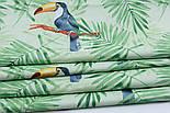 "Ткань хлопковая ""Большие туканы на зелёных пальмовых ветках"" на салатовом (№1814а), фото 4"