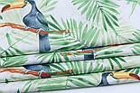 """Ткань хлопковая """"Большие туканы на зелёных пальмовых ветках"""" на белом (№1815а), фото 5"""