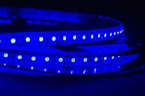 Dilux - Светодиодная лента SMD 3528 120LED/м, негерметичная IP33, синяя.