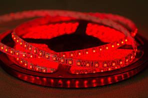 Dilux - Светодиодная лента SMD 3528 120LED/м, негерметичная IP33, красная.