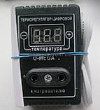 Інкубатор Курочка Ряба ІБ-80 автоматичний, фото 6