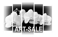 Модульная картина Орхидея черно-белая