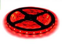 Светодиодная лента LED 3528-60 R красная.