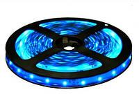 Светодиодная лента LED 3528-60 B синий.