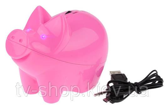 Розовая свинка с МР3