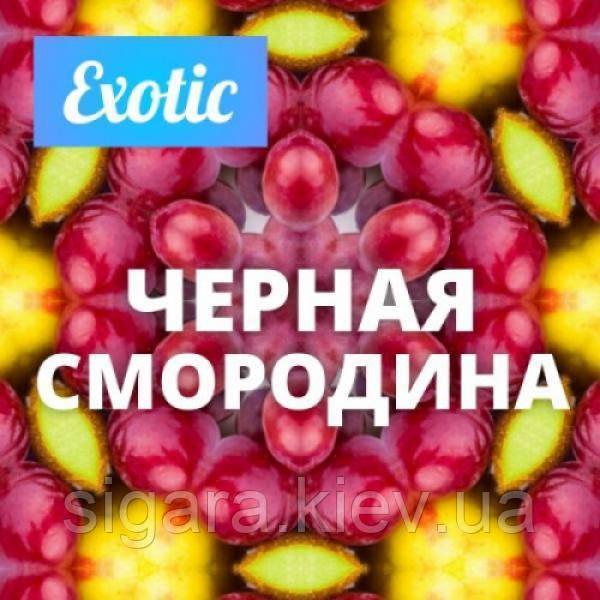 Черная смородина (Экзотик) - 5 мл