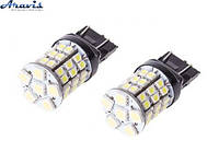 Лампочка T20 PULSO LED48 SMD 6x5050+ 42x3528 LP-20480 12V 3W clear