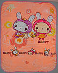 Детское одеяло плед плюш велюр двустороннее 100х135 см