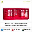 Большой ящик для перевозки индюков с верхней и боковой дверцами 96х57х42, фото 5