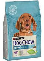 АКЦИЯ!! Сухой  корм для щенков с ягненком Dog Chow Puppy 11+3кг, фото 1