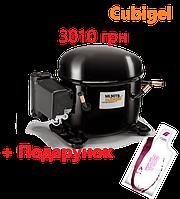 Акція від REFRICO - купуй холодильне обладнання і отримай ПОДАРУНОК!