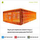 Ящик для перевозки живой птицы с двумя верхними дверцами 96х57х27, фото 5