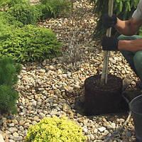 Ваш cад Высадка растений: диаметр кома более 50 см  % рассчитывается от сметной стоимости растений