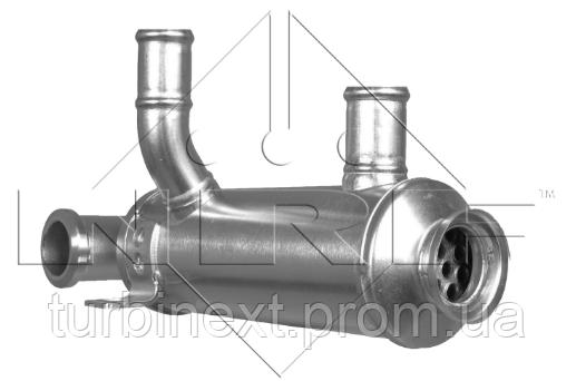 Радіатор рециркуляції NRF 48316 ОГ Citroen Berlingo/Peugeot Expert/Partner 1.6 HDi 05-18