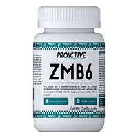 ProActive ZMB6 90 tabs