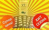 В 7 , V 7 - 10 капсул ПРОБНИК, Сильные Капсулы для Похудения - абсолютно сильный состав !!!, фото 8