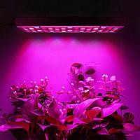 Фитолампа 45Вт 225LED 220В лампа для растений полный спектр # 10.05273